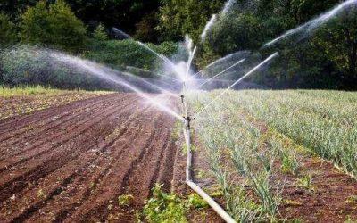 Installazione del sistema d'irrigazione del terreno